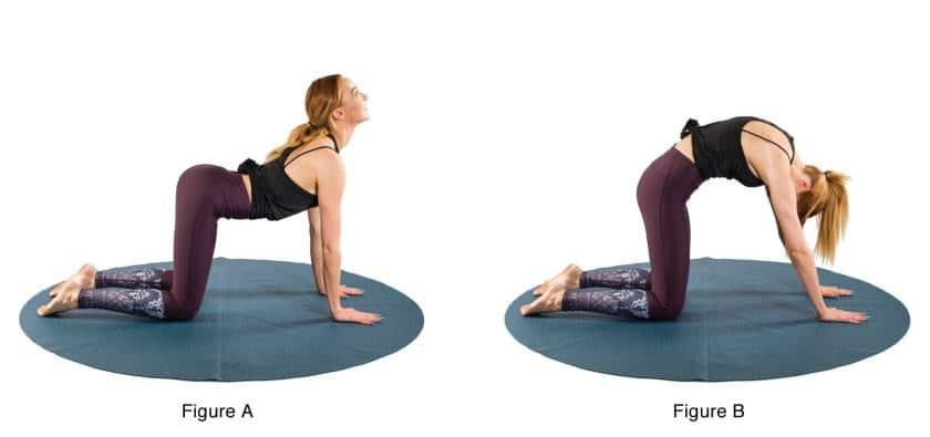 Esercizi di yoga nel primo trimestre di gravidanza: il secondo esercizio