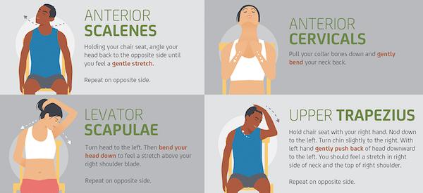 Cause di spasmo al collo - esercizi di stretching