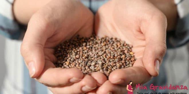 Ci sono benefici dei semi di ravanello per una gravidanza gemellare?