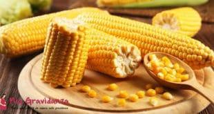 È possibile mangiare mais durante la gravidanza?