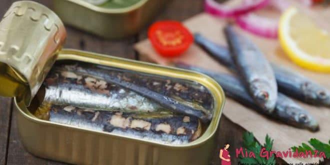 I benefici e i rischi delle sardine per le donne incinte