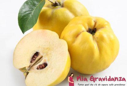 Benefici-mele cotogne-incinta-frutta-mele cotogne